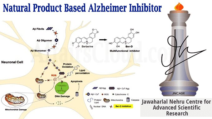 JNCASR scientists develop a natural product based Alzheimer inhibitor